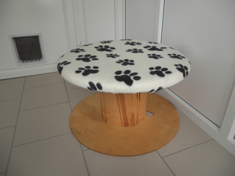 Toad stool 800